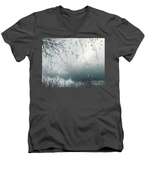 That Streak Men's V-Neck T-Shirt