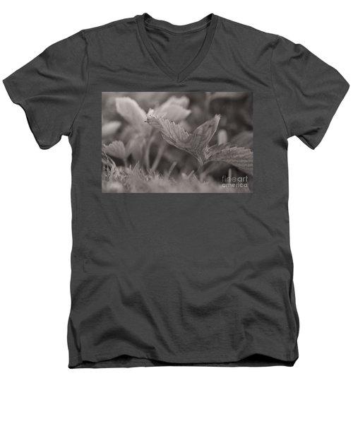 The Allotment Project - Strawberry Plant Men's V-Neck T-Shirt
