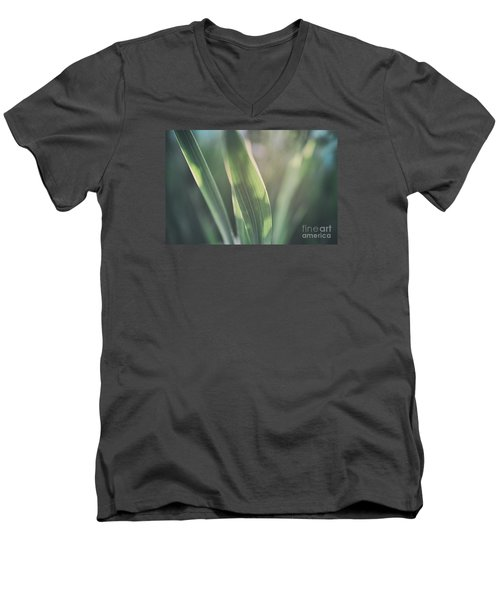 The Allotment Project - Sweetcorn Leaves Men's V-Neck T-Shirt