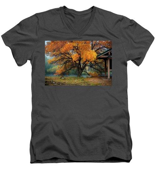 The Autumn Tree Men's V-Neck T-Shirt