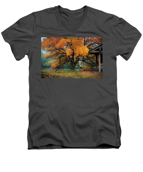 The Autumn Tree Men's V-Neck T-Shirt