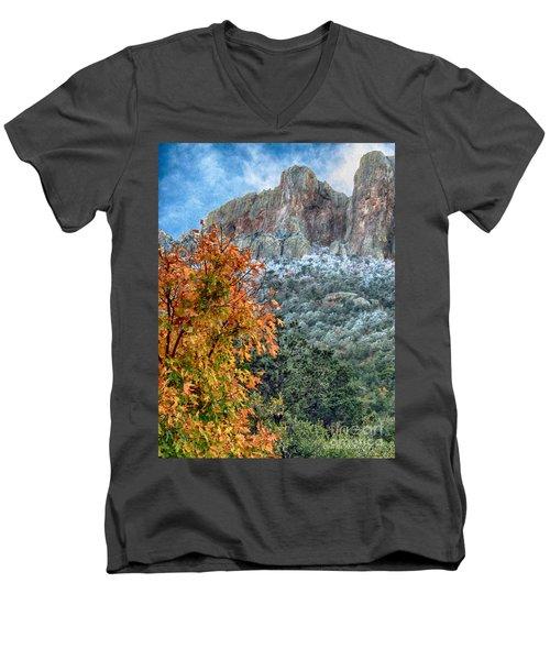 The Basin Men's V-Neck T-Shirt