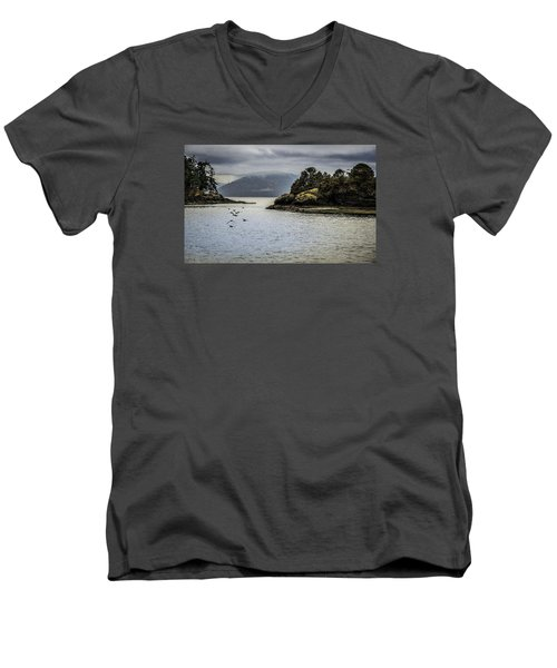 The Bay Men's V-Neck T-Shirt