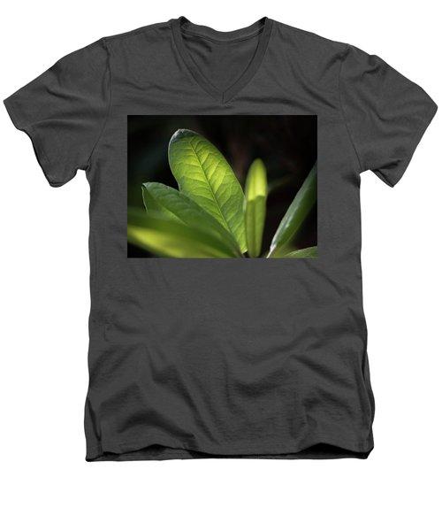 The Beauty Of A Leaf - Men's V-Neck T-Shirt