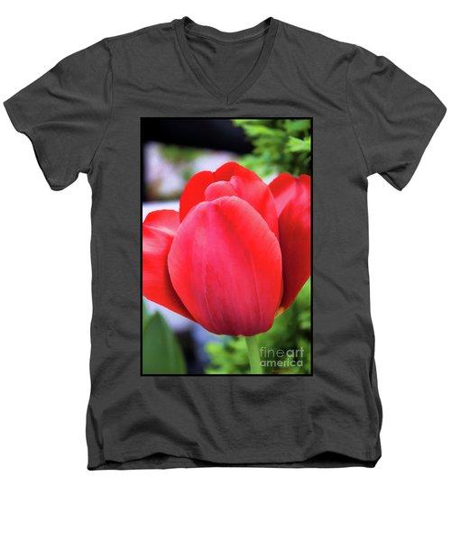 The Tulip Beauty Men's V-Neck T-Shirt