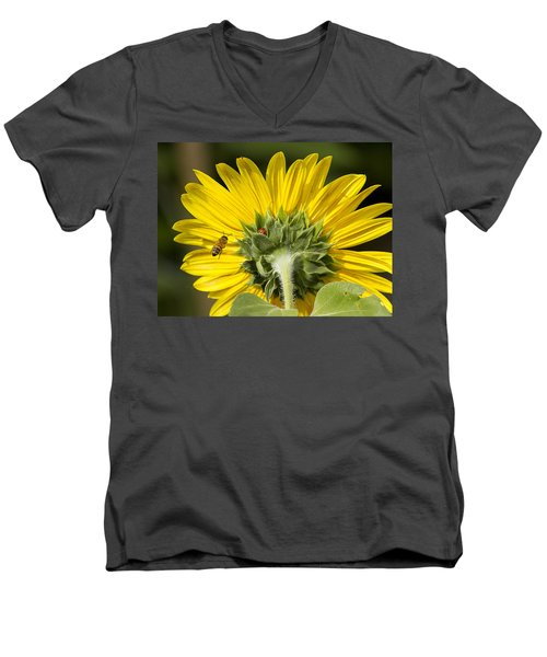 The Bee Lady Bug And Sunflower Men's V-Neck T-Shirt