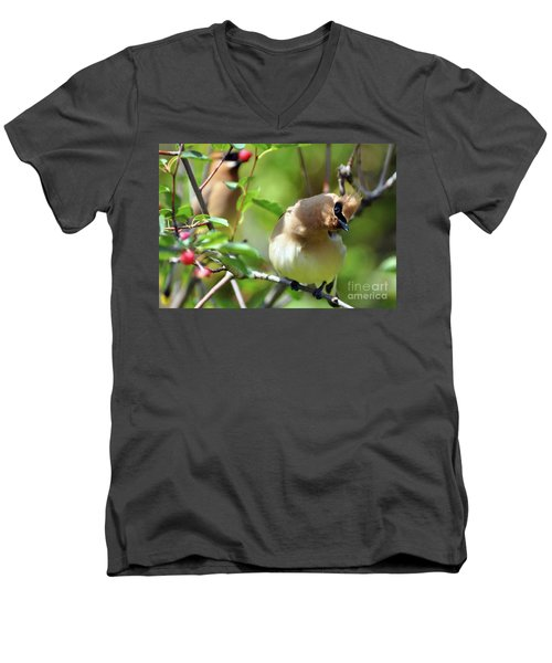 The Berry Pickers Men's V-Neck T-Shirt