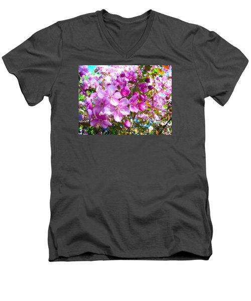 The Blossoms Of Spring Men's V-Neck T-Shirt