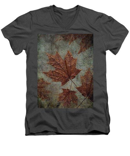 The Bronzing Men's V-Neck T-Shirt