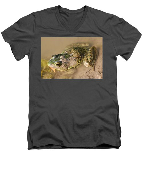 The Camouflage Frog Men's V-Neck T-Shirt by Lisa DiFruscio