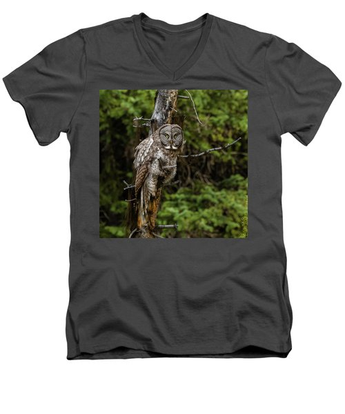 The Captivating Great Grey Owl Men's V-Neck T-Shirt by Yeates Photography