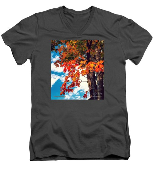 The  Changing  Men's V-Neck T-Shirt by MaryLee Parker