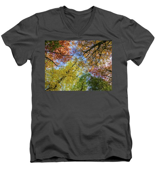 The Colors Of Autumn Men's V-Neck T-Shirt