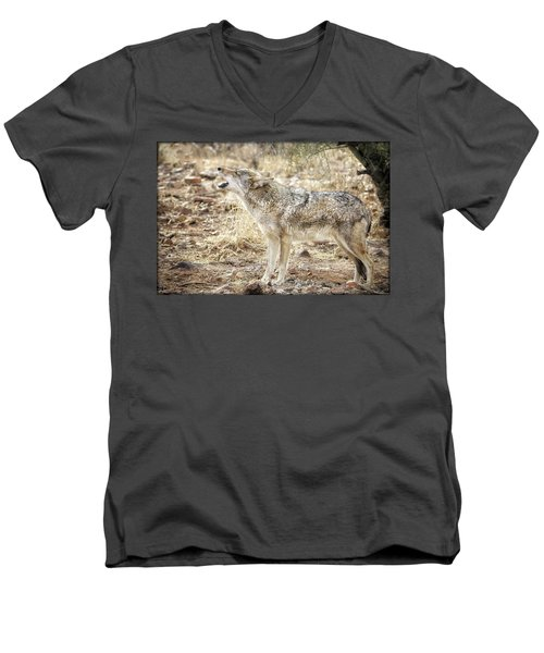 The Coyote Howl Men's V-Neck T-Shirt