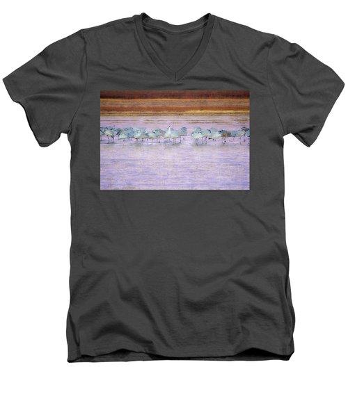 The Cranes Of Bosque Men's V-Neck T-Shirt