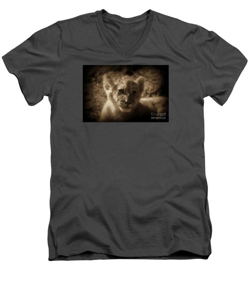 Men's V-Neck T-Shirt featuring the photograph The Cub by Lisa L Silva