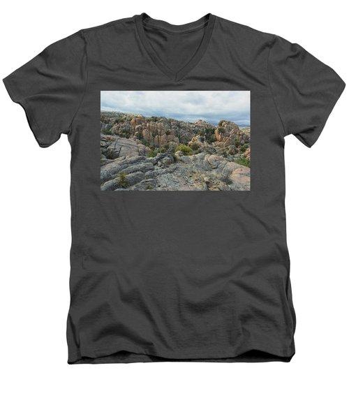 The Dells Men's V-Neck T-Shirt