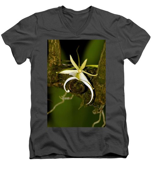The Elusive And Rare Ghost Orchid Men's V-Neck T-Shirt