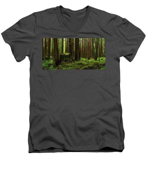 The Emerald Forest Men's V-Neck T-Shirt