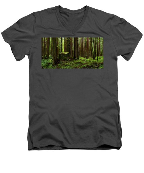 The Emerald Forest Men's V-Neck T-Shirt