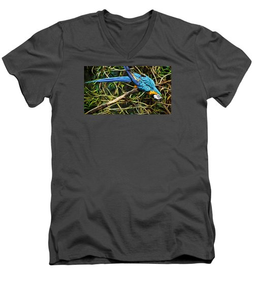 Men's V-Neck T-Shirt featuring the photograph The Enchanted Forest by Cameron Wood
