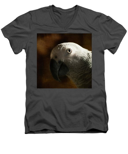 The Eyes Are The Windows To The Soul Men's V-Neck T-Shirt