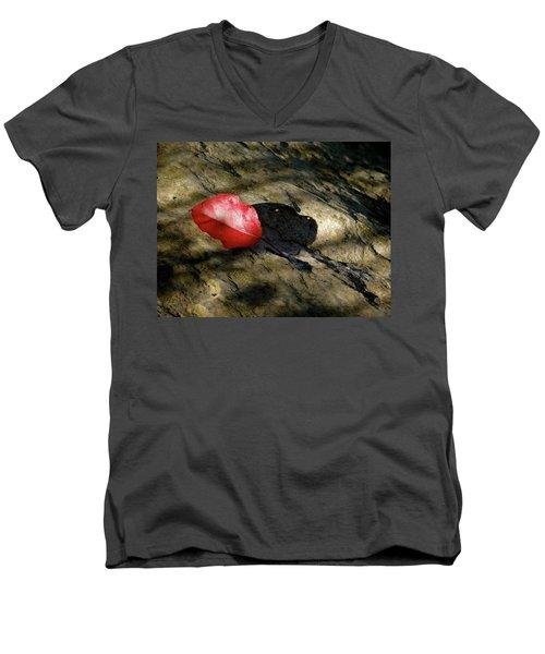 The Fallen Leaf Men's V-Neck T-Shirt