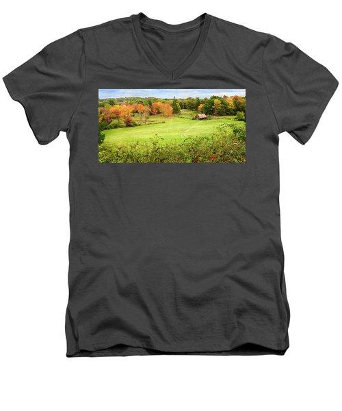 The Farm In The Dell Men's V-Neck T-Shirt
