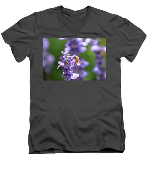 The Fauna And Flora Rendez-vous Men's V-Neck T-Shirt by Yoel Koskas