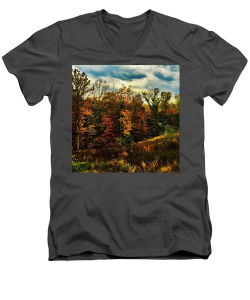 The First Days Of Fall Men's V-Neck T-Shirt