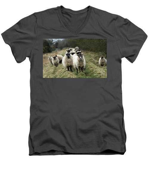 The Flock 2 Men's V-Neck T-Shirt