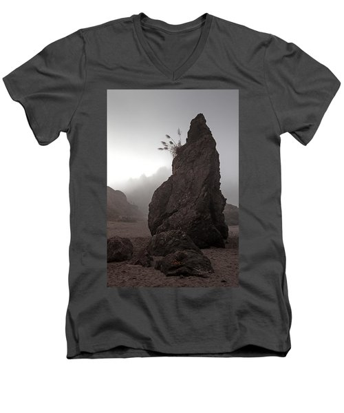 The Flower Girl Men's V-Neck T-Shirt by Mark Alder