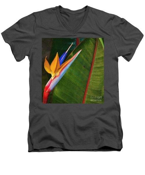 the flower of God Men's V-Neck T-Shirt by John Kolenberg