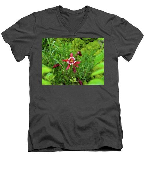 The Flowering Columbine Men's V-Neck T-Shirt