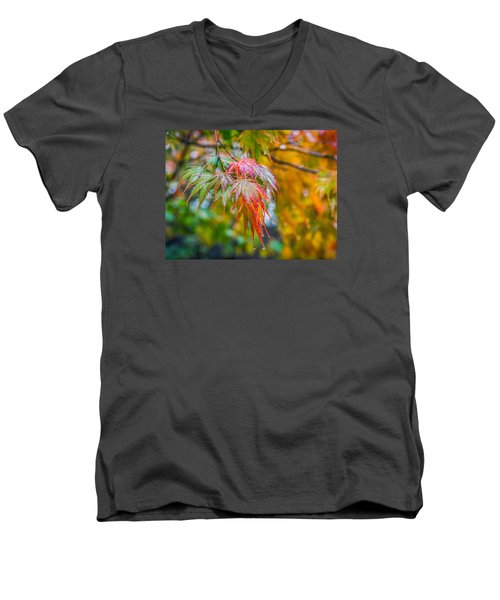 The Freshness Of Fall Men's V-Neck T-Shirt by Ken Stanback