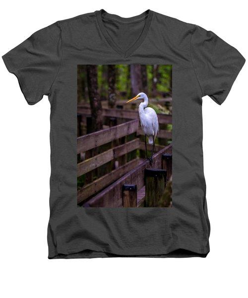 The Great Egret Men's V-Neck T-Shirt