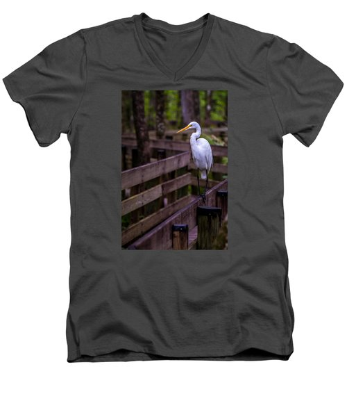 The Great Egret Men's V-Neck T-Shirt
