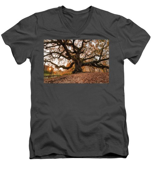The Great Oak Men's V-Neck T-Shirt