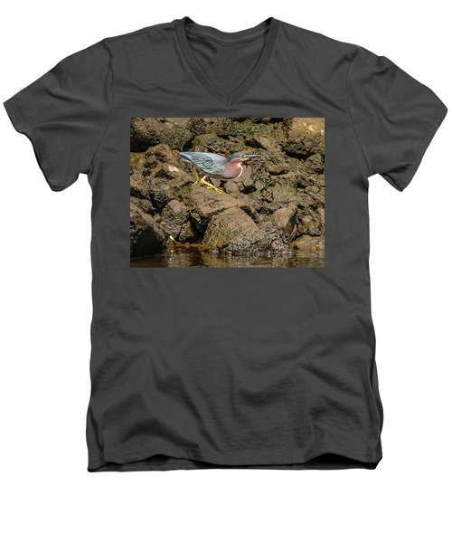 The Green Heron Men's V-Neck T-Shirt by Jerry Cahill