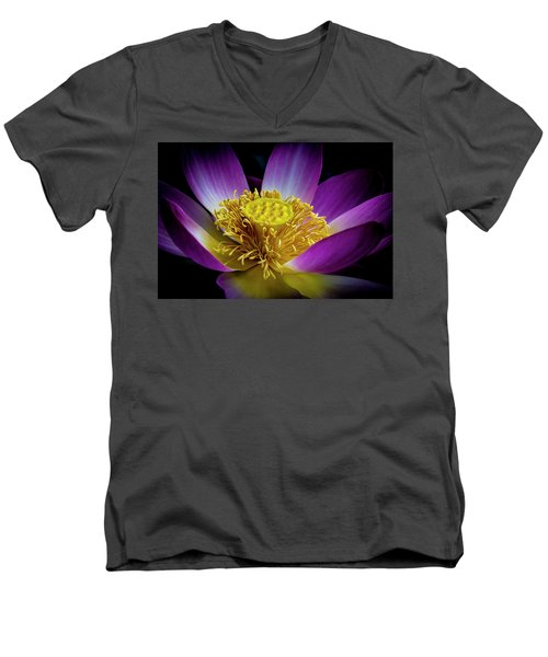 The Heart Of The Lily Men's V-Neck T-Shirt