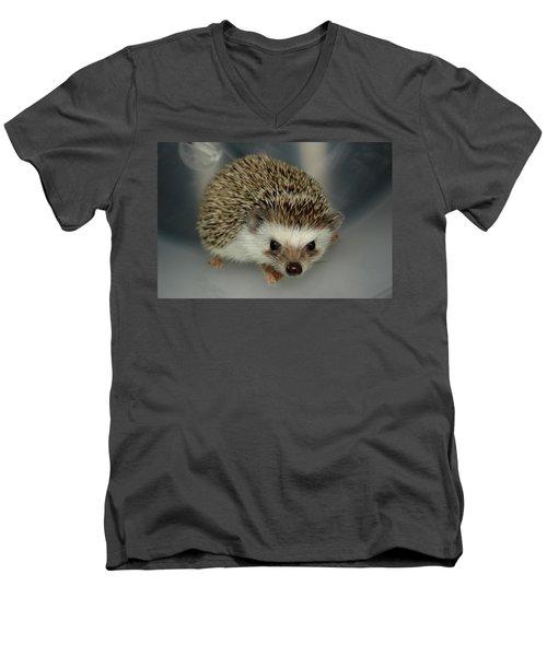 The Hedgehog Men's V-Neck T-Shirt