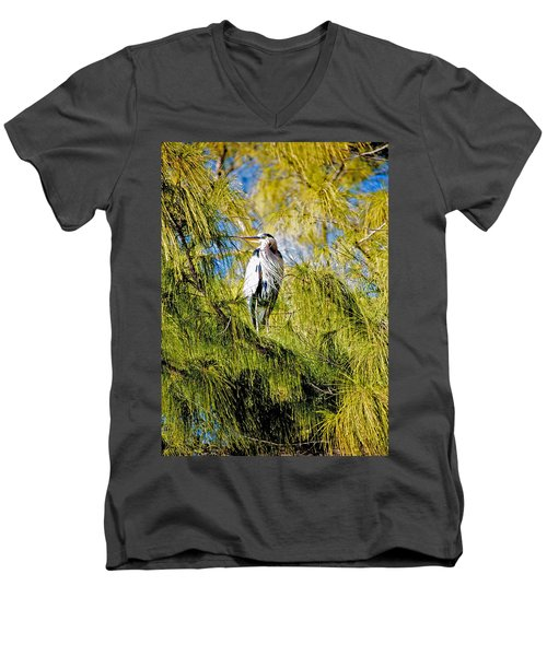 The Heron's Whiskers Men's V-Neck T-Shirt