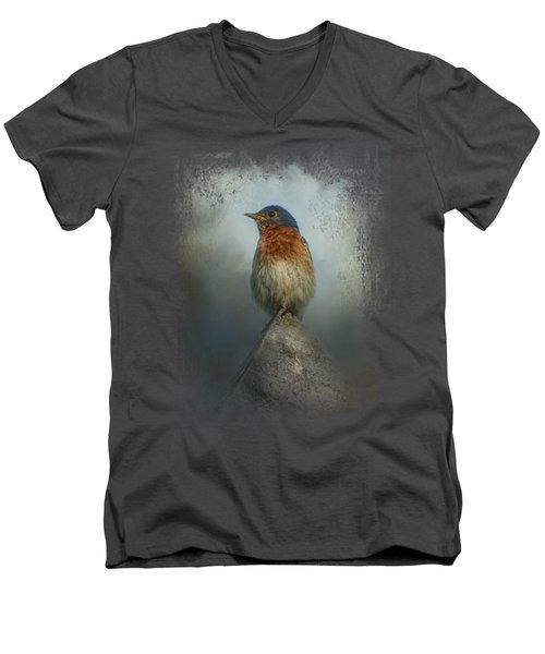 The Highest Point Men's V-Neck T-Shirt by Jai Johnson