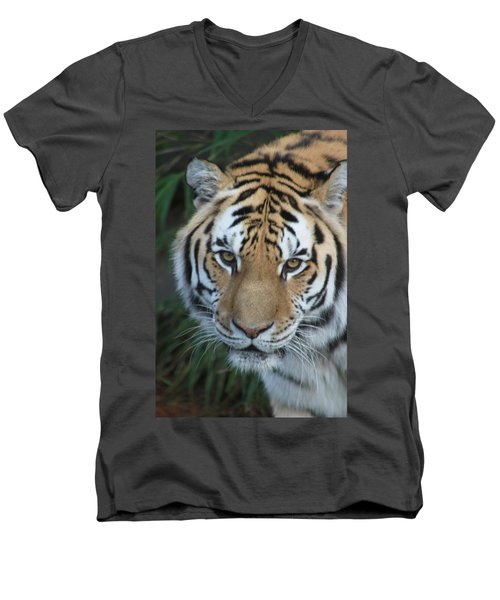 Men's V-Neck T-Shirt featuring the photograph The Hunter by Laddie Halupa