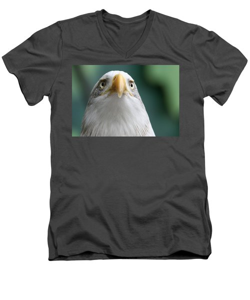 Men's V-Neck T-Shirt featuring the photograph The Hunters Stare by Laddie Halupa