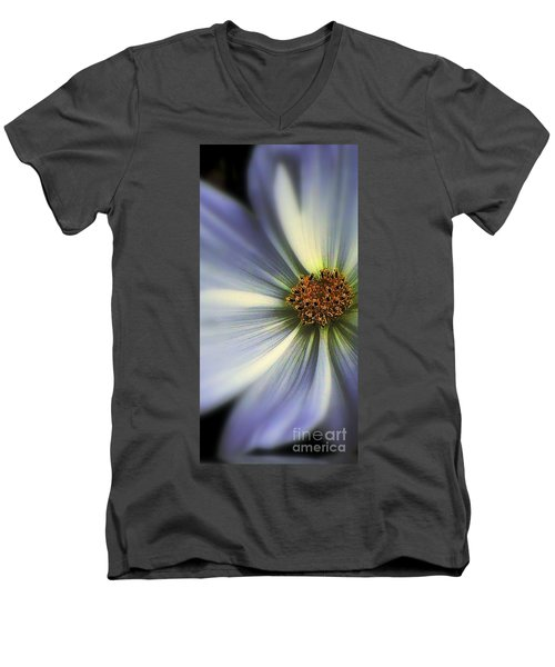 The Jewel Men's V-Neck T-Shirt