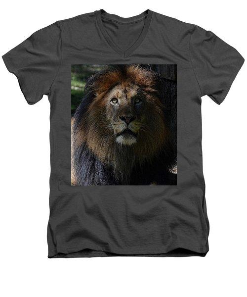 The King In Awe Men's V-Neck T-Shirt by Ronda Ryan