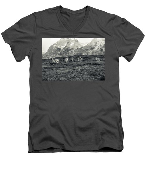 The Lamas Men's V-Neck T-Shirt by Andrew Matwijec
