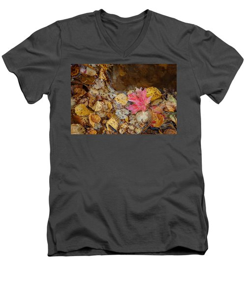 The Last Leaf Men's V-Neck T-Shirt