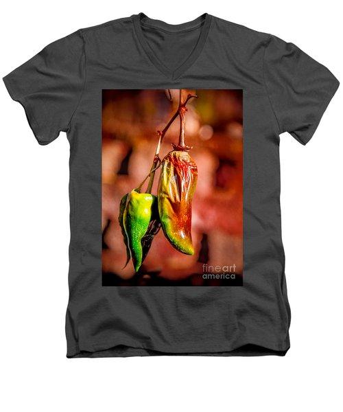 The Last Peppers Men's V-Neck T-Shirt